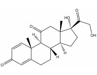 [reference-standards] Prednisone