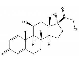 [metabolites] Prednisolone