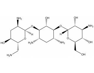 [reference-standards] Tobramycin