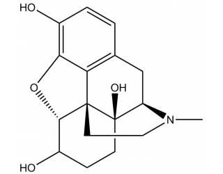 [metabolites] 6-Hydroxy-oxymorphone