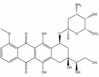 [metabolites] Doxorubicinol