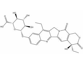[metabolites] SN-38 glucuronide