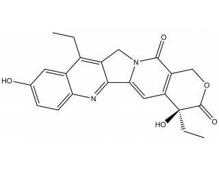 [metabolites] SN-38