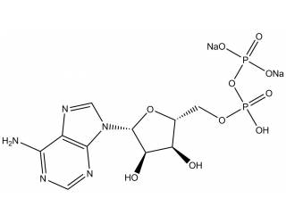 [reference-standards] Adenosine 5'-Diphosphate disodium salt