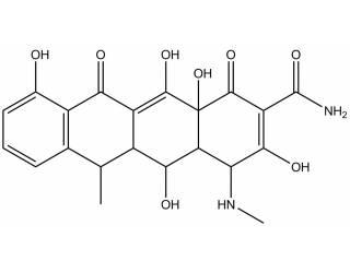 [metabolites] N-Desmethyldoxycycline