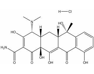 [metabolites] 4-Epitetracycline hydrochloride salt