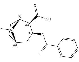 [metabolites] Benzoylecgonine